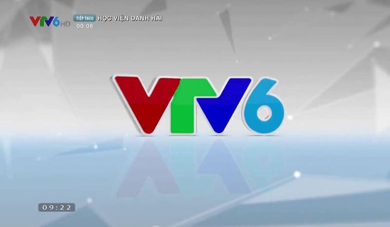 VTV6 là kênh truyền hình dành cho tuổi trẻ với các chương trình tập trung khai thác mọi khía cạnh trong đời sống, văn hóa của giới trẻ