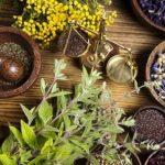 5 bài thuốc dân gian chữa chứng bất lực hiệu quả