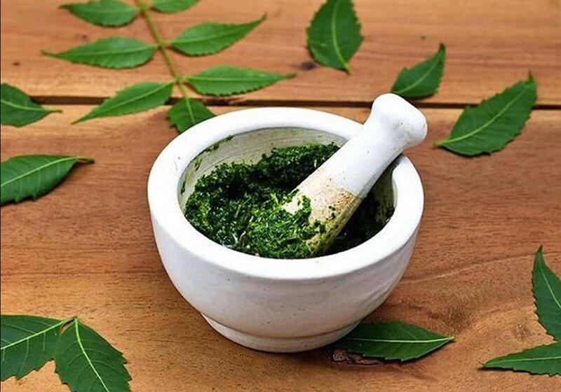 Chia sẻ về ung nhọt và Bài thuốc từ cây cỏ