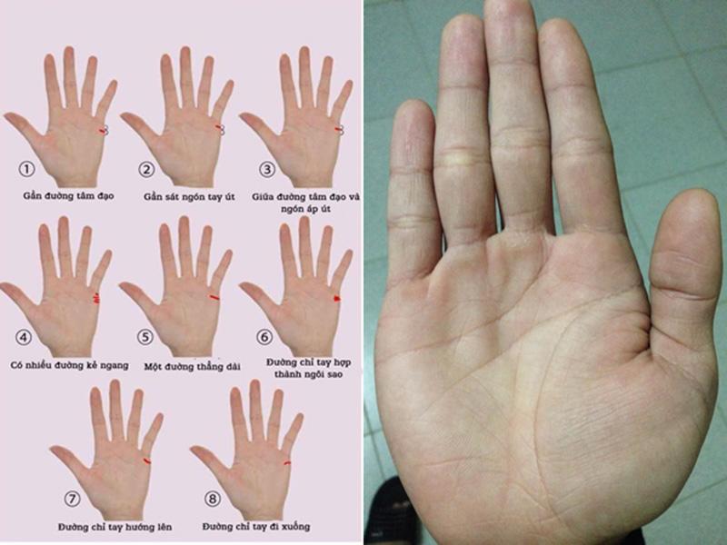 Đường chỉ tay có liên quan đến vận mệnh