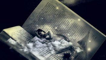 Giải mã giấc mơ: Bạn là thục nữ hay hổ báo trên giường? | Blog Tử Vi Phong Thủy
