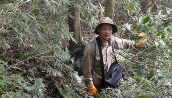 Thiền sư kỳ lạ tại Hymalaya và những cây thuốc tiêu diệt ung thư trên đỉnh Phan xi păng (Kỳ 2)