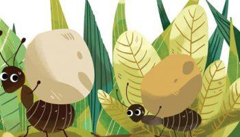 Truyện Cổ Tích VIệt Nam | Cái kiến mày kiện củ khoai