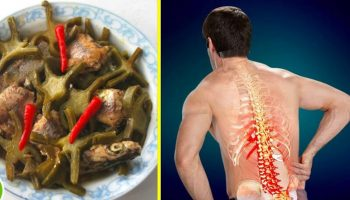 Bất ngờ với món ăn từ cây… xương rồng chữa bệnh đau cột sống