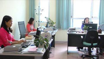 Nữ Kỷ Tỵ có nên bỏ kinh doanh theo nghiệp công chức?