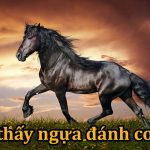 Giải mã giấc mơ: Nằm mơ thấy ngựa là điềm gì?
