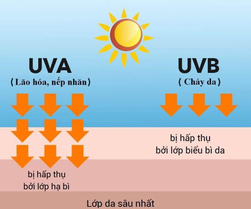 Tia UVA và UVB là 2 tác nhân gây hại trực tiếp cho da có trong ánh nắng mặt trời